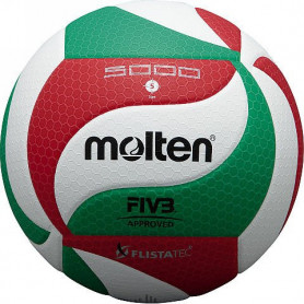 Volejbalový míč Molten V5M5000