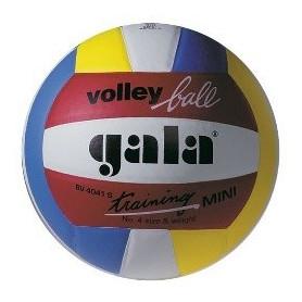 Volejbalový míč GALA Mini Colour Training BV4041S
