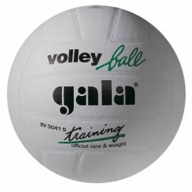 Volejbalový míč GALA Training BV5041S